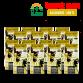 Naturel Sızma Zeytinyağı 5L x 16 Adet